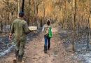 Semagro apoia força-tarefa que investiga número de animais mortos no Pantanal