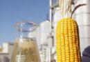 Reinald  Azambuja anuncia planta de etanol de milho no Estado