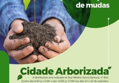 Prefeitura de Maracaju distribuirá mudas em comemoração ao dia da Árvore