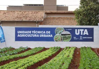 Campo Grande leva alimentos a pessoas em situação de vulnerabilidade